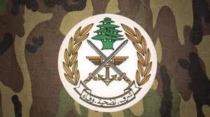 الجيش: ضبط أسلحة ومخدّرات في منزل مواطن في بعلبك